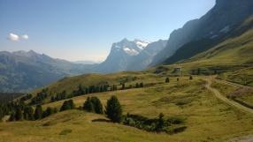 Blick auf Wetterhorn, Grindelwald